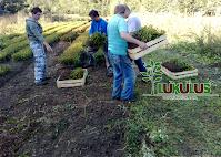 https://sites.google.com/a/lukulus.com/home/lesna-skolka/10.png
